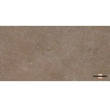 Дайсен Керамогранит коричневый SG211400R 30х60 9мм